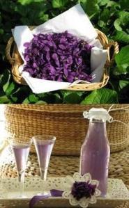 liquore-sciroppo-kir-rosolio-di-violette-L-pBlGRT